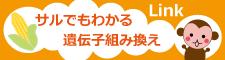 安田美絵のサルでもわかる食と社会問題シリーズ、他…