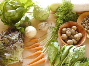 スズキさん家のお野菜