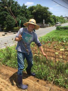 12/3(土)自然農法の畑、お気軽半日大豆収穫ツアー@横浜市いずみ野