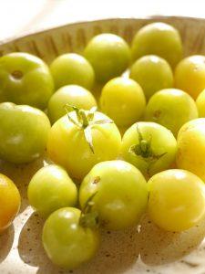 庭の青トマトをピクルスに