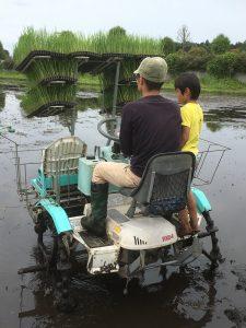田植え機運転初体験!~有機稲作チャレンジ@栃木
