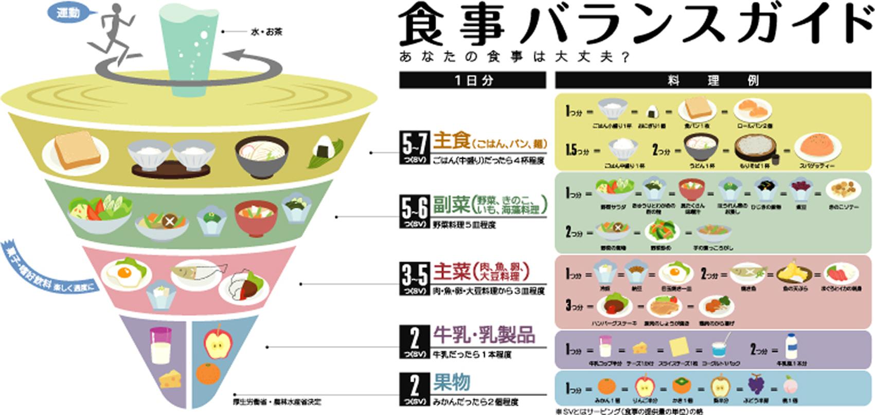 食事バランスガイド拡大版