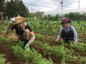 農業体験会のご報告☆自然栽培農家、鈴木さんの畑/令和元年9月1日/マクロビ料理も健全な食材あってこそ