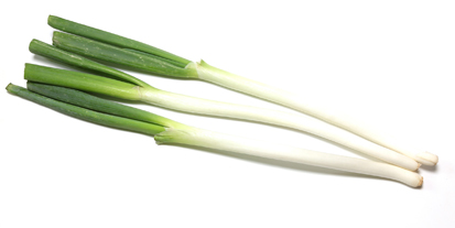Pictured Japanese leek in a white backgorund.