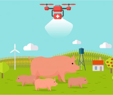 ドローンでウイルス散布!?中国の養豚事情と「炒猪団」