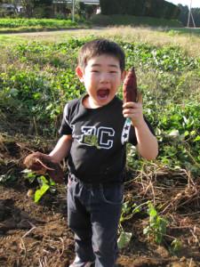 いも堀りか、草刈りか、あるいは何か、作業内容は当日のお楽しみです