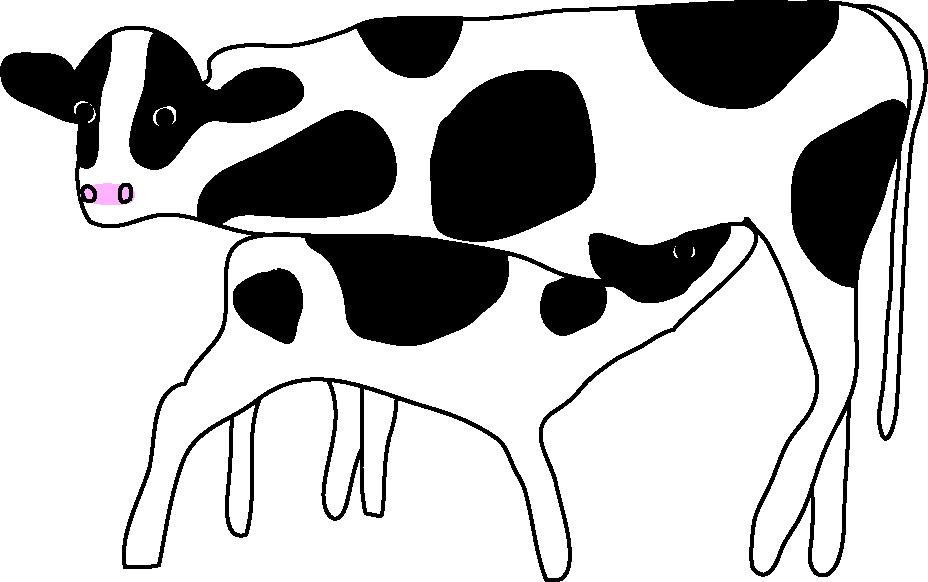 乳を飲む子牛ー小