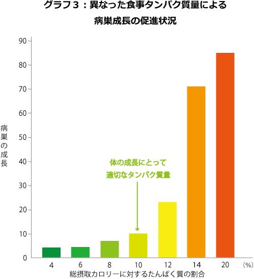 グラフ3-異なった食事タンパク質量による病巣成長の促進状況