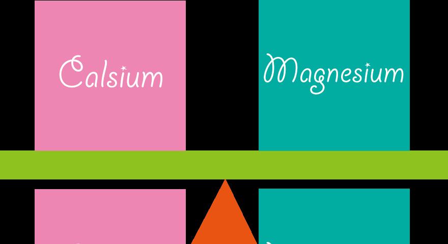 カルシウムとマグネシウムのバランス-m-