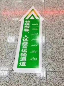 特殊旅客人体器官運輸通道